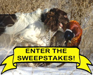 Wingshooting USA Sweepstakes